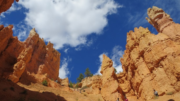 Switchbacks up Navajo Loop Trail, Bryce Canyon National Park, Utah