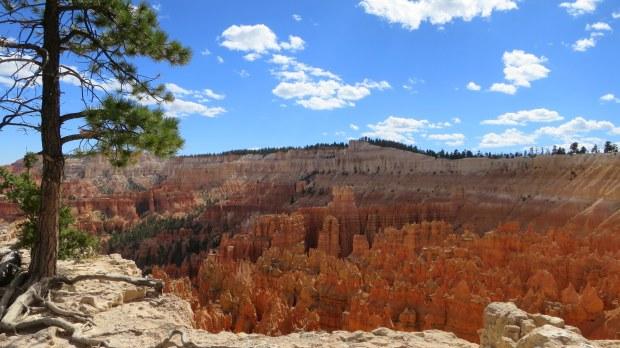 Rim Trail, Bryce Canyon National Park, Utah