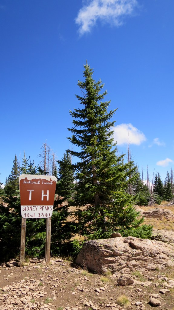 Realizing I had been following a legitimate trail and had now arrived at a backcountry trailhead, Sidney Peaks Trail, Dixie National Forest, Utah