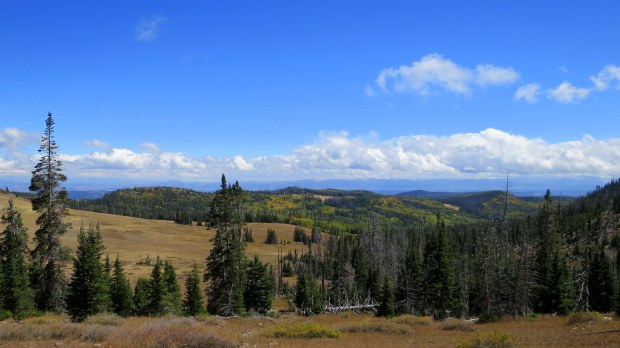 Sidney Peaks Trail, Dixie National Forest, Utah