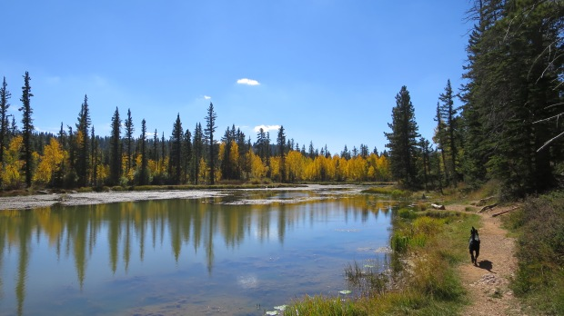 Aspen Mirror Lake, Dixie National Forest, Utah