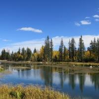 An Exploration Near Aspen Mirror Lake