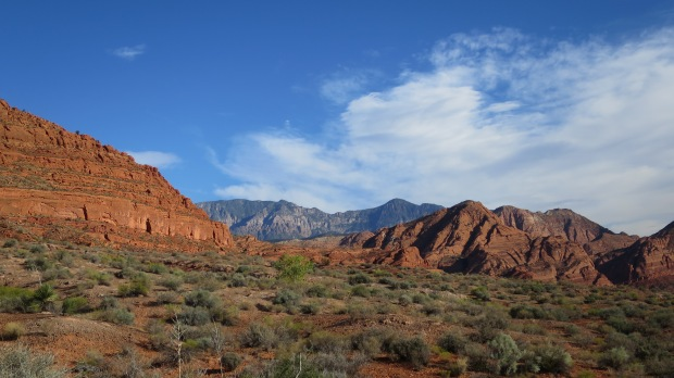 Walking in Red Cliffs National Conservation Area, Utah