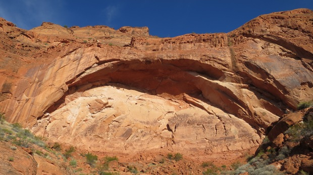 Bigger than it looks, Red Cliffs National Conservation Area, Utah