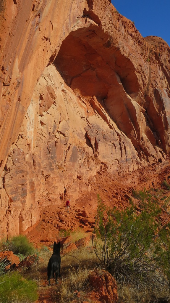 This photo shows how deep the erosion into the cliffs actually is.... Plus, it features The Abbadog, Red Cliffs National Conservation Area, Utah