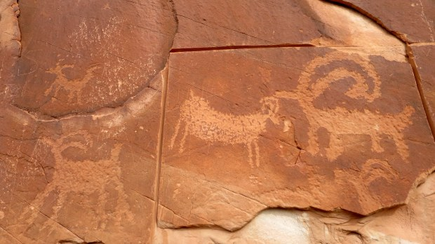 Petroglyphs, Escalante River Canyon, Grand Staircase-Escalante National Monument, Utah