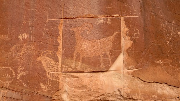 Defaced petroglyphs with evidence of attempted removal, Escalante River Canyon, Grand Staircase-Escalante National Monument, Utah