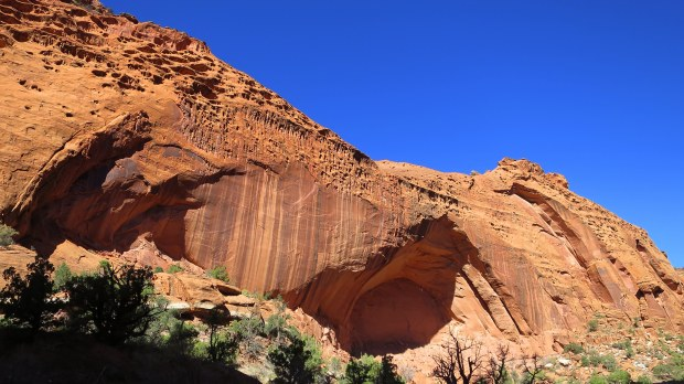 Long Canyon, Burr Trail, Grand Staircase-Escalante National Monument, Utah