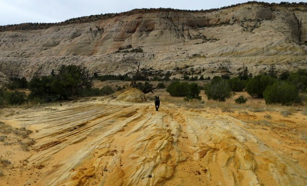 On our hike from camp, Burr Trail, Grand Staircase-Escalante National Monument, Utah
