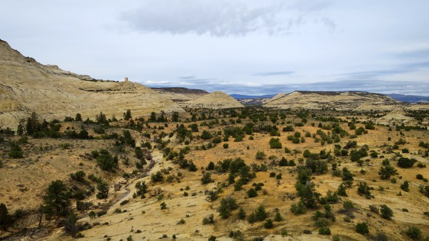 On top of a butte, Burr Trail, Grand Staircase-Escalante National Monument, Utah