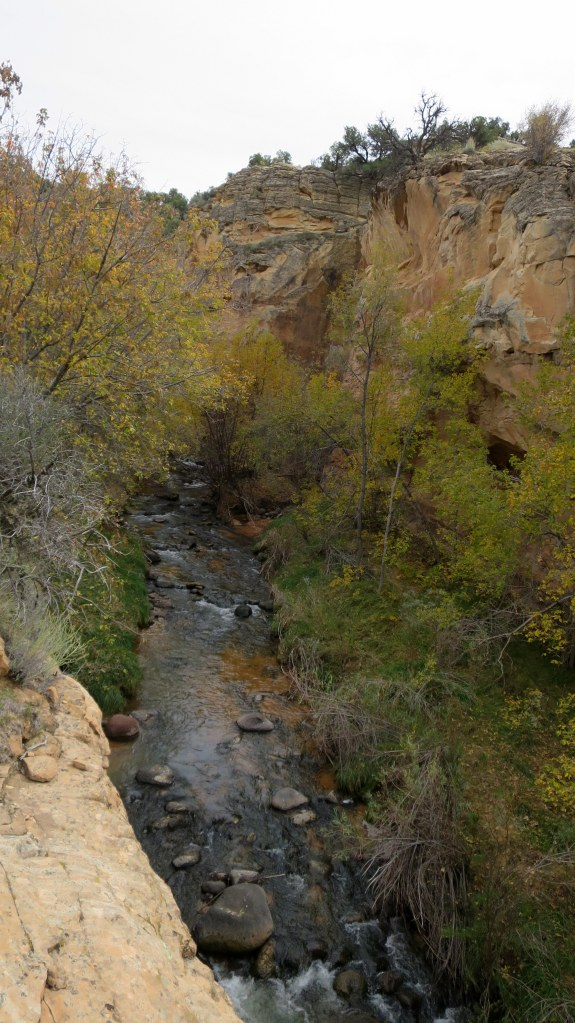 Creek below in the canyon, Burr Trail, Grand Staircase-Escalante National Monument, Utah