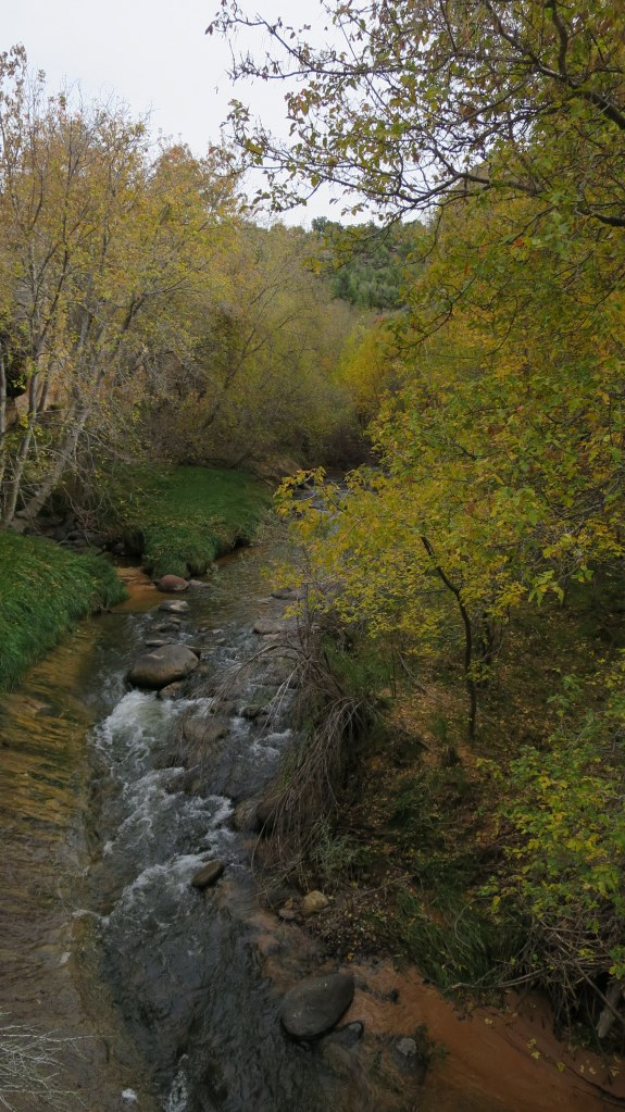 Creek below, Burr Trail, Grand Staircase-Escalante National Monument, Utah