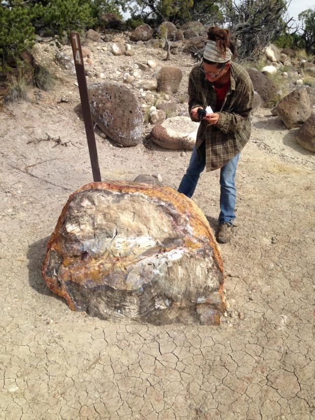 Me taking photos, Petrified Forest Trail, Escalante Petrified Forest State Park, Utah