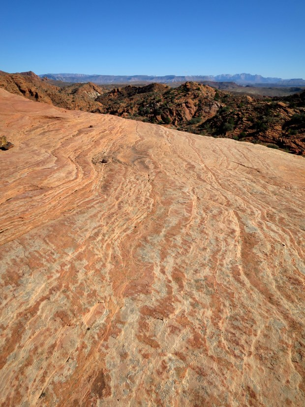 More petrified dunes, Red Cliffs National Conservation Area, Utah