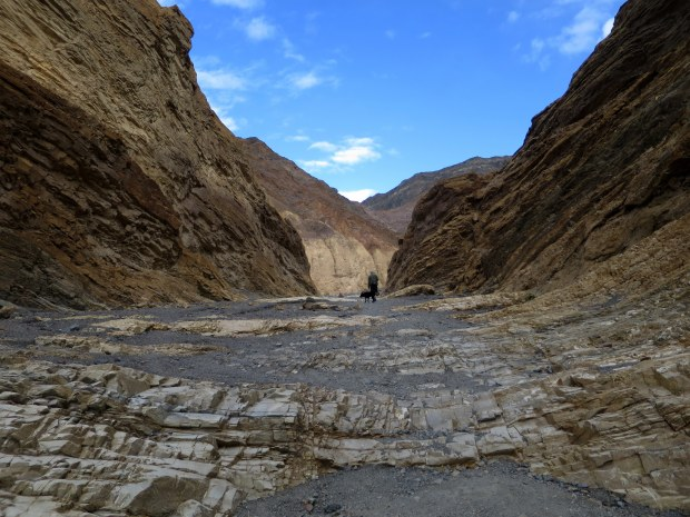 Tom and Abby ahead of me in Mosaic Canyon, Death Valley National Park, California