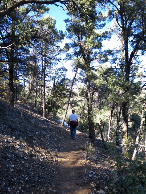 Tom hiking ahead of me on the Lovell Canyon Trail, Spring Mountains National Recreation Area, Humboldt-Toynbee National Forest, Nevada