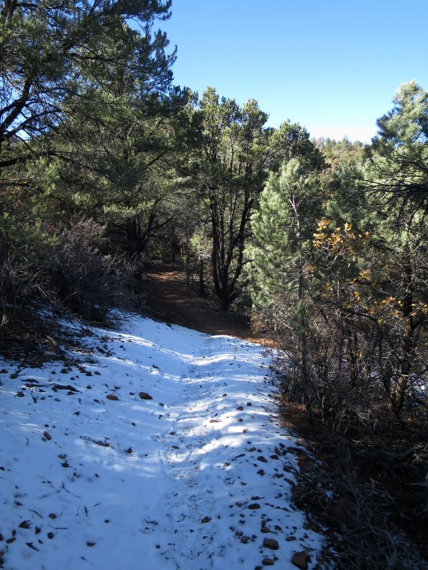 Patches of snow in the shade on the Lovell Canyon Trail, Spring Mountains National Recreation Area, Humboldt-Toynbee National Forest, Nevada