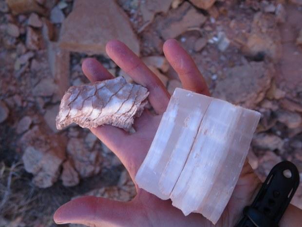 Gypsum in Muddy Mountains Wilderness, Nevada