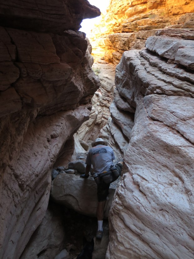 Tom climbing over choke stones in Anniversary Narrows, Muddy Mountains Wilderness, Nevada