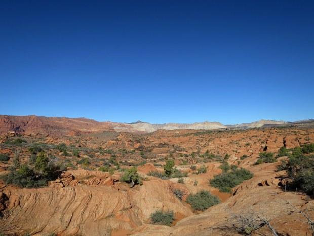 Red Cliffs Desert Preserve, Utah