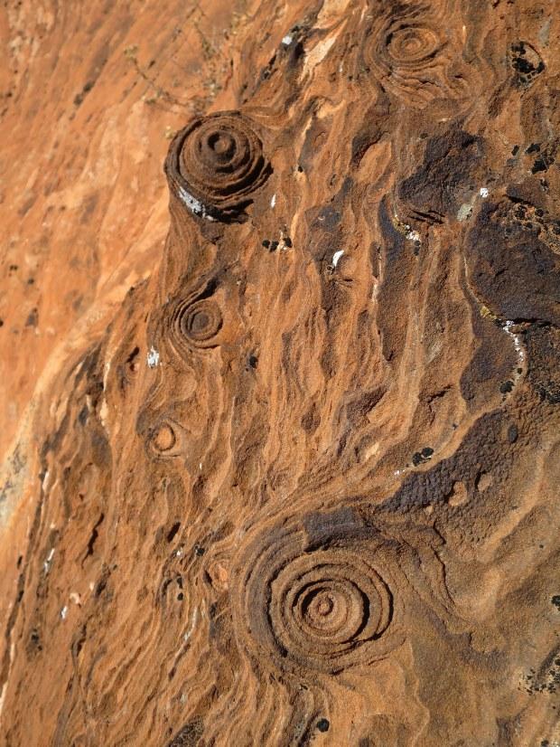 Liesegang rings, Gila Trail, Snow Canyon State Park, Utah