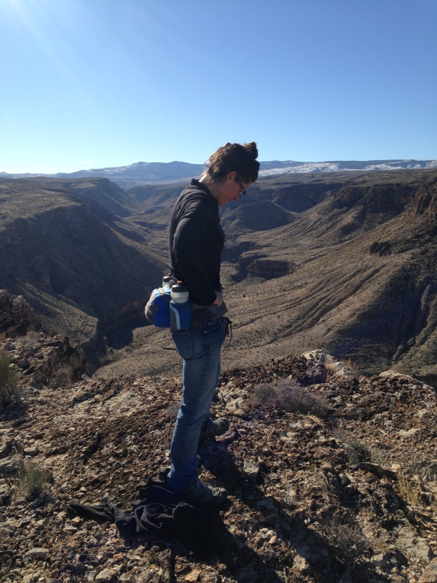 Not facing the camera but I like this shot of the canyon better, Black Rock, Arizona