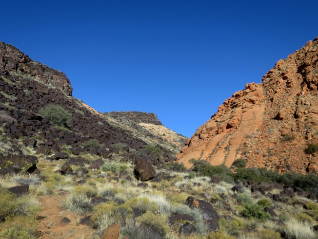 Yellow Knolls Trail leading between volcanic rock and sandstone, Red Cliffs Desert Reserve, Utah