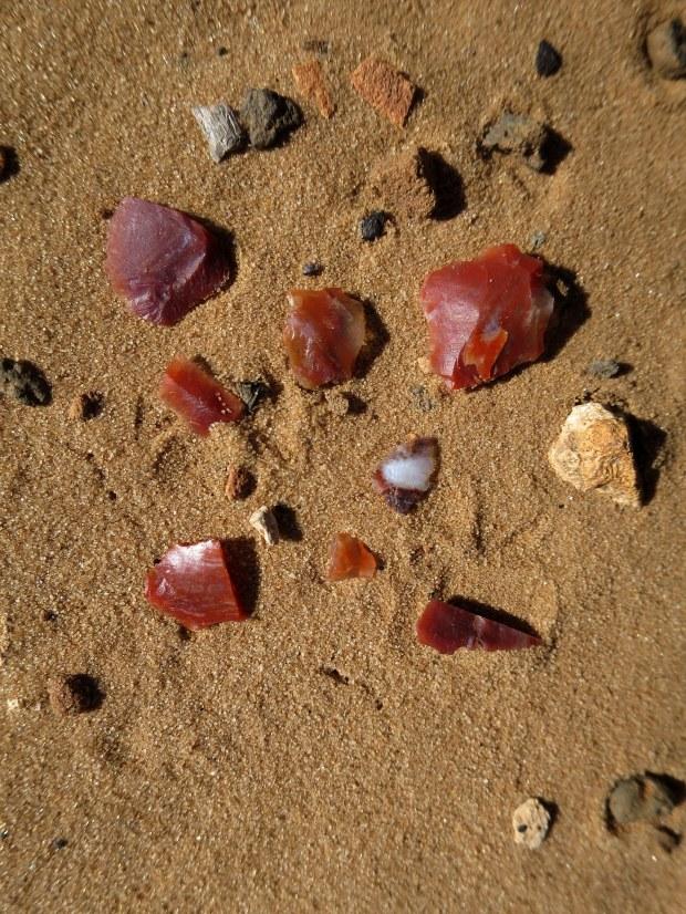 Chert scattered about, Red Cliffs Desert Reserve, Utah