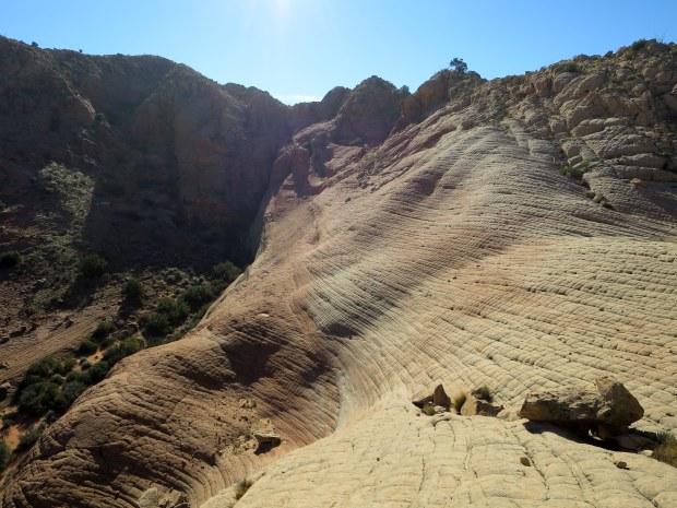 More checkerboard, Red Cliffs Desert Reserve, Utah