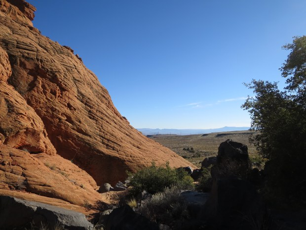 Yellow Knolls Trail, Red Cliffs Desert Reserve, Utah