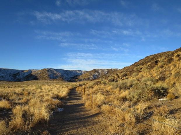Rinconada Canyon, Petroglyph National Monument, New Mexico