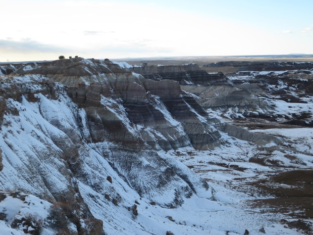 Photo of the Blue Mesa unfortunately not showing much blue, Petrified Forest National Park, Arizona