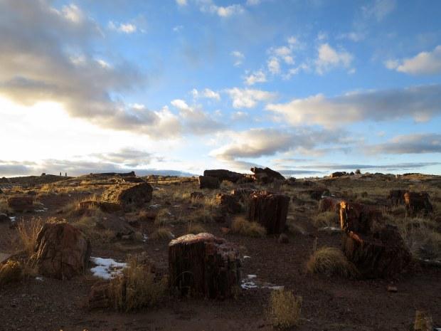 Giant Logs Trail, Petrified Forest National Park, Arizona