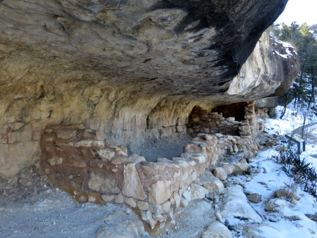 Cliff dwellings, Island Trail, Walnut Canyon National Monument, Arizona