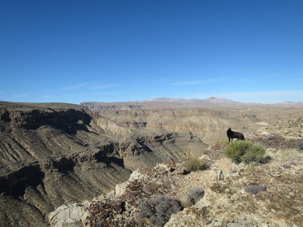 And we reach a canyon rim, Black Rock, Arizona