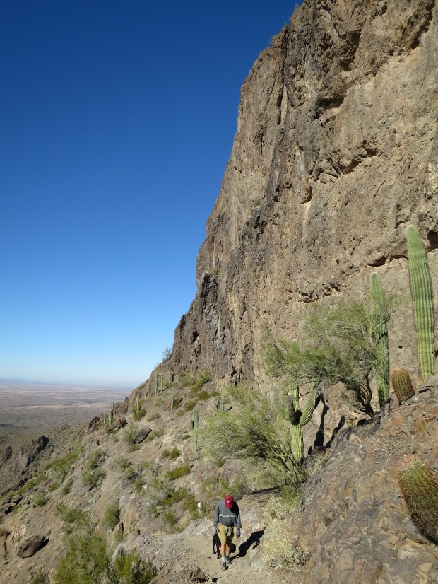 Tom and Abby behind me on the Hunter Trail, Picacho Peak State Park, Arizona