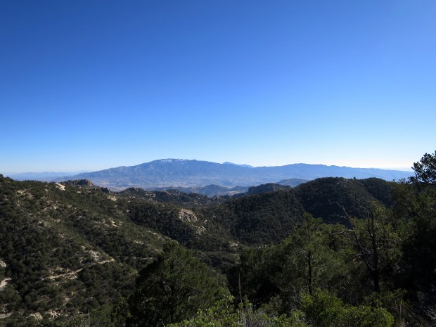 View from the ridge, Coronado National Forest, Arizona