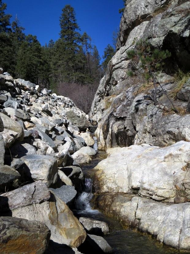 Marshall Gulch, Coronado National Forest, Arizona