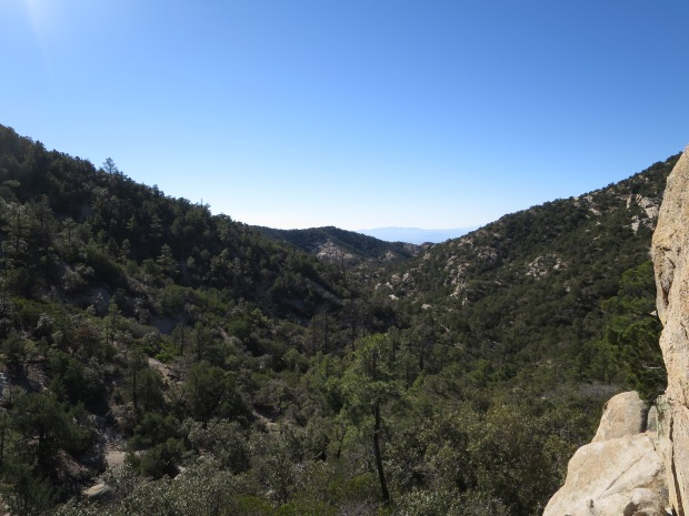 View from the high point of the ridge before dropping into the canyon, Bug Springs Trail, Coronado National Forest, Arizona