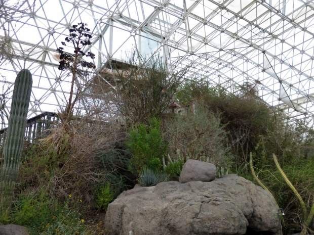 Sonoran desert biome, Biosphere 2, Arizona