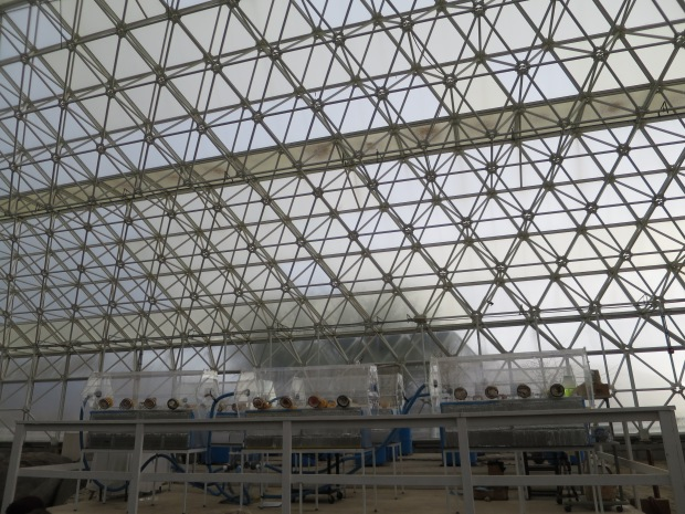 Experiment on weathering of rock by microbes, Biosphere 2, Arizona