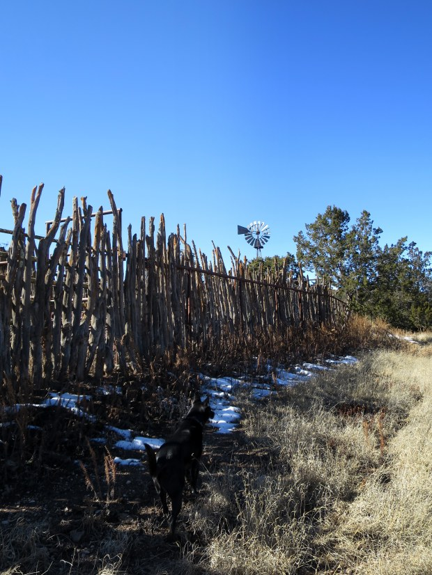 Corral and windmill-driven pump, Lincoln National Forest, New Mexico