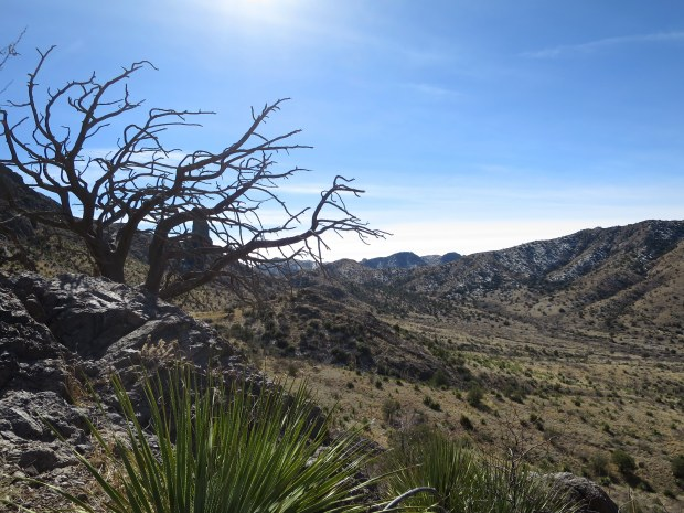 View south while climbing a hill, Soledad Canyon Recreation Area, New Mexico