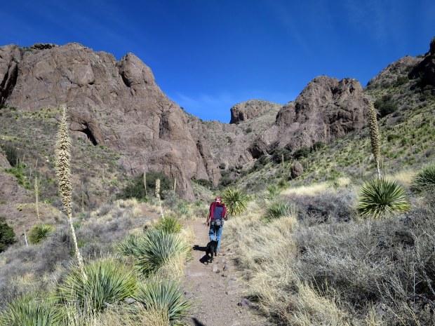 Bar Canyon, Soledad Canyon Recreation Area, New Mexico