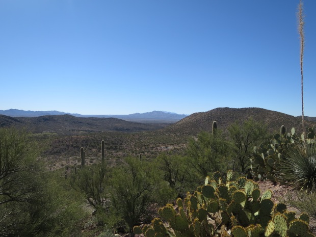 View from Colossal Cave Mountain Park, Tucson, Arizona