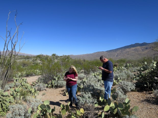 Tina and Kurt looking at rocks, Saguaro National Park, Tucson, Arizona