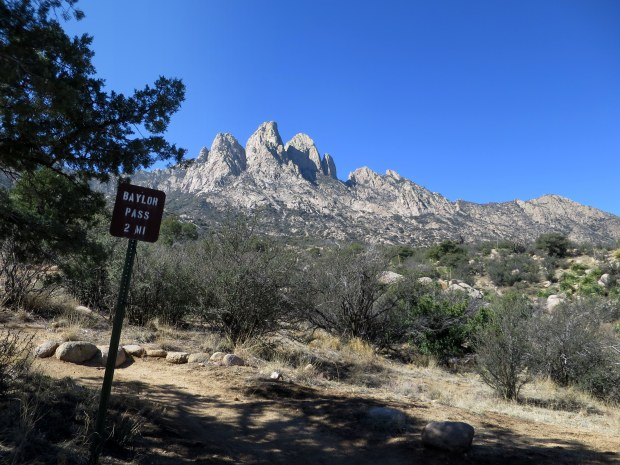 Aguirre Springs Trailhead, Baylor Pass Trail, Organ Mountain-Desert Peaks National Monument, New Mexico