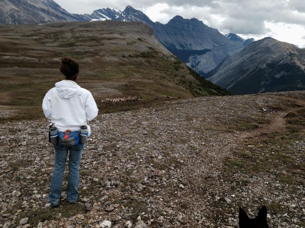 Banff_Jasper_iphone 2607
