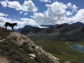 Banff_Jasper_iphone 2682