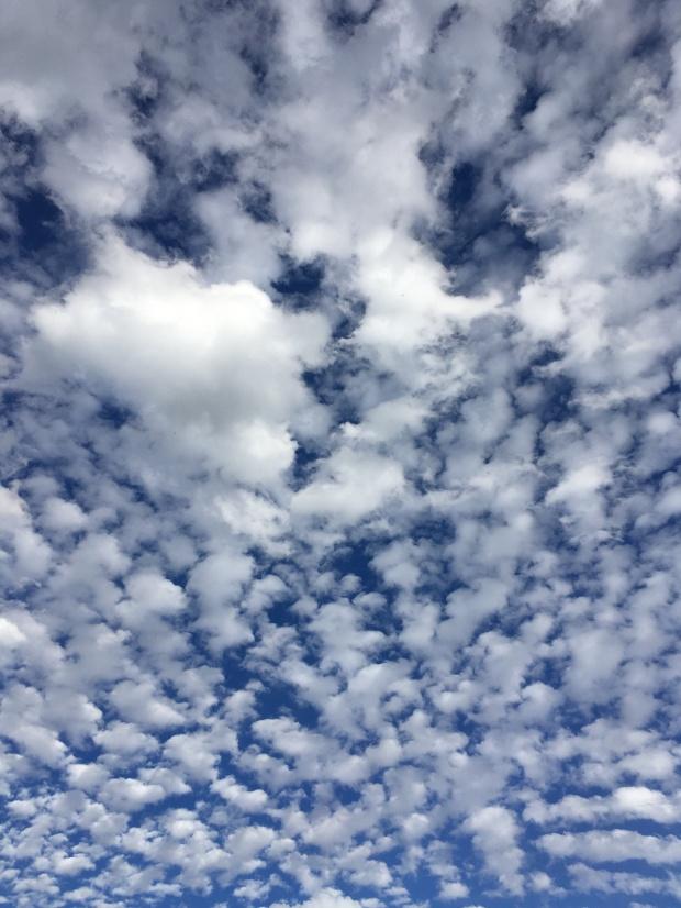 Pretty great clouds